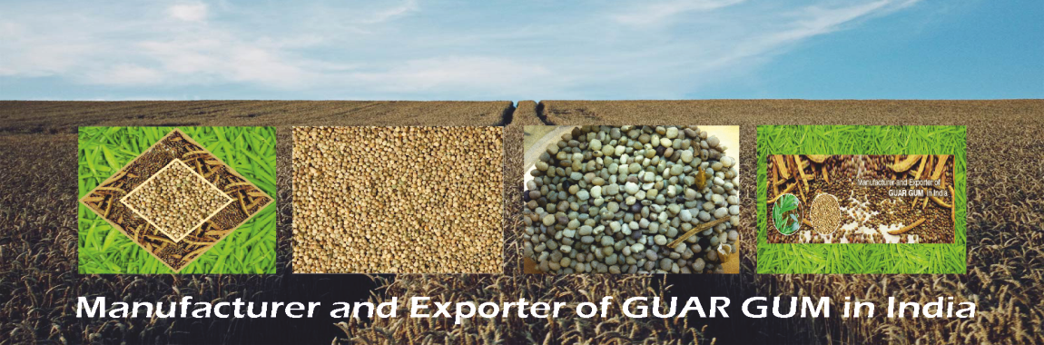 guar gum powder manufacturer from india